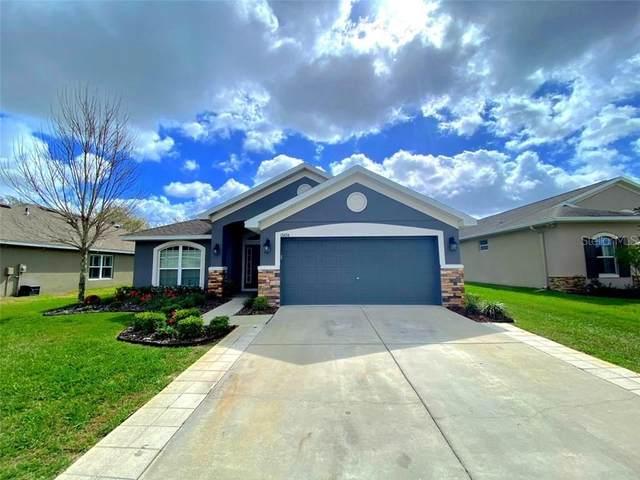 13454 Niti Drive, Hudson, FL 34669 (MLS #W7831318) :: Pepine Realty