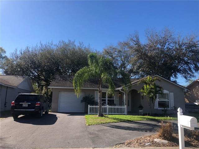 3433 Dellefield Street, New Port Richey, FL 34655 (MLS #W7831323) :: Sarasota Property Group at NextHome Excellence