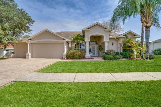 4012 St Ives Boulevard, Spring Hill, FL 34609 (MLS #W7831330) :: Bob Paulson with Vylla Home