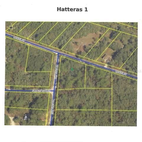 Hatteras Drive, Webster, FL 33597 (MLS #W7831351) :: Dalton Wade Real Estate Group