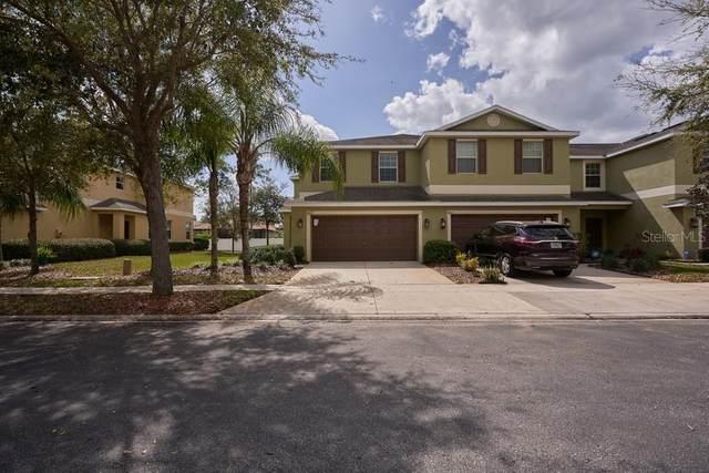 8615 Fiddleleaf Court, Tampa, FL 33647 (MLS #W7831381) :: Griffin Group