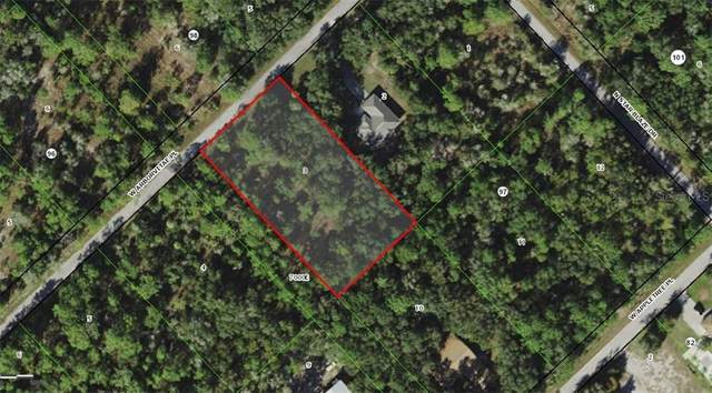 12184 W Arborvitae Place, Crystal River, FL 34428 (MLS #W7831440) :: Carmena and Associates Realty Group