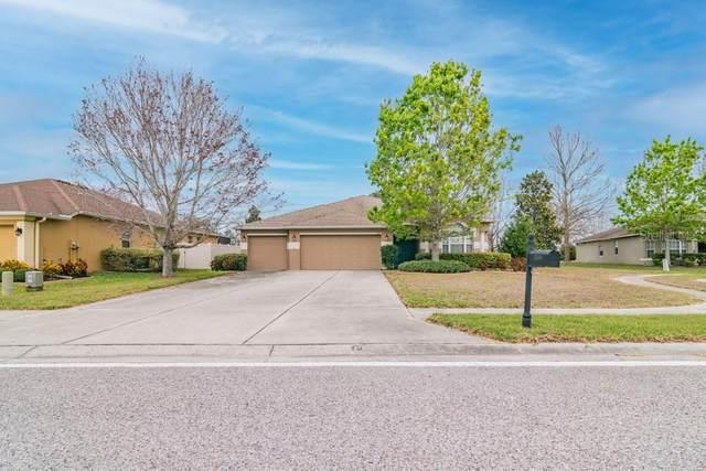 1509 Blue Marlin Boulevard, Holiday, FL 34691 (MLS #W7831471) :: Team Borham at Keller Williams Realty