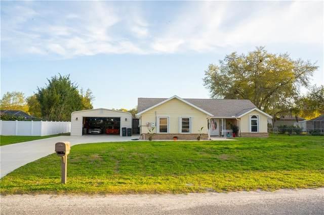 29246 Rhodin Place, Wesley Chapel, FL 33545 (MLS #W7831473) :: Positive Edge Real Estate