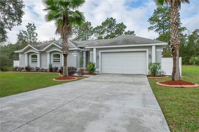 11129 Lomita Wren Road, Weeki Wachee, FL 34614 (MLS #W7831493) :: Carmena and Associates Realty Group