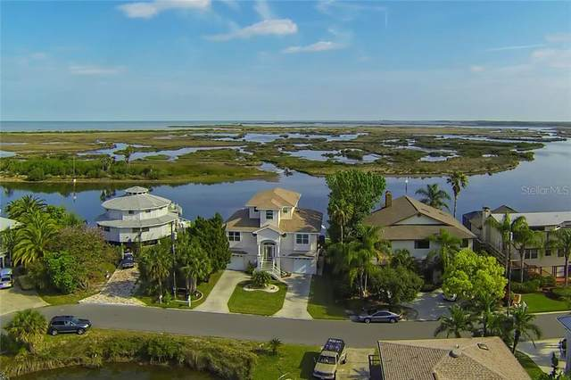 3291 Flamingo Boulevard, Hernando Beach, FL 34607 (MLS #W7831496) :: Carmena and Associates Realty Group