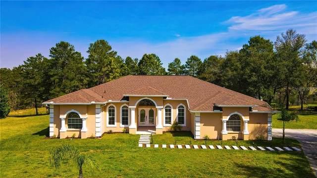 10158 Airy Oaks Court, Weeki Wachee, FL 34613 (MLS #W7831501) :: Key Classic Realty