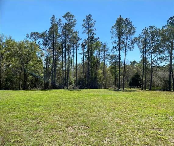 3572 Goldsmith Road, Brooksville, FL 34602 (MLS #W7831510) :: Southern Associates Realty LLC