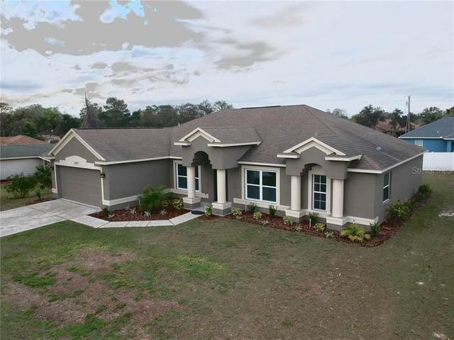 12427 Gulliver Road, Spring Hill, FL 34609 (MLS #W7831516) :: Zarghami Group