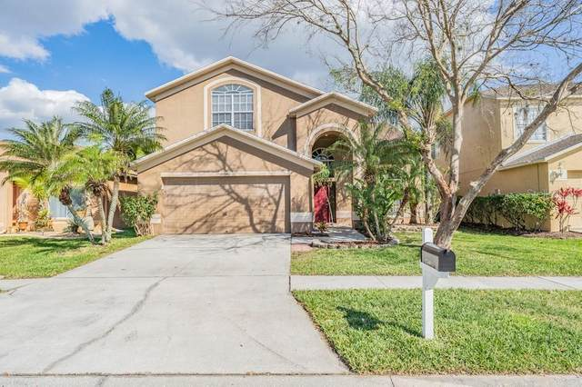 27540 Breakers Drive, Wesley Chapel, FL 33544 (MLS #W7831543) :: The Duncan Duo Team