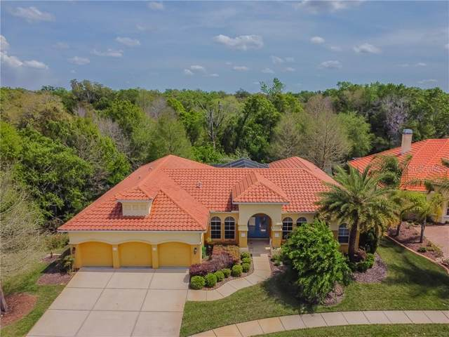 5112 Delacroix Drive, Brooksville, FL 34604 (MLS #W7832049) :: Everlane Realty