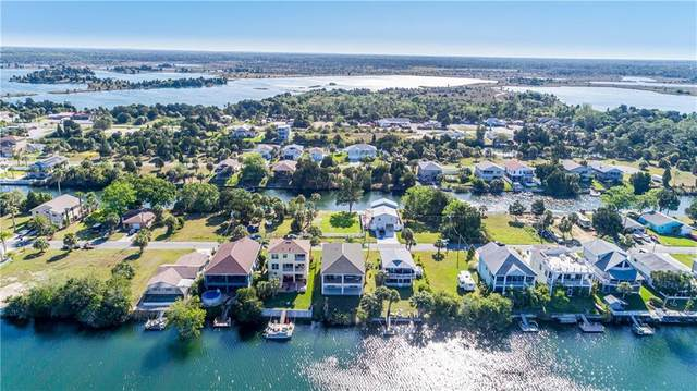 3221 Sea Grape Drive, Hernando Beach, FL 34607 (MLS #W7832256) :: Vacasa Real Estate