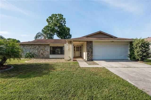 9824 Didrikson Drive, New Port Richey, FL 34655 (MLS #W7832323) :: The Lersch Group