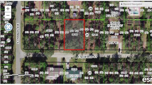 3047 E Scofield Street, Inverness, FL 34453 (MLS #W7832337) :: Griffin Group
