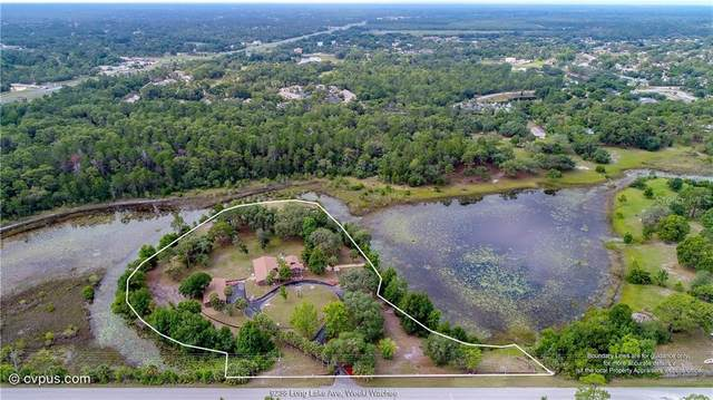 9238 Long Lake Avenue, Weeki Wachee, FL 34613 (MLS #W7832346) :: Vacasa Real Estate