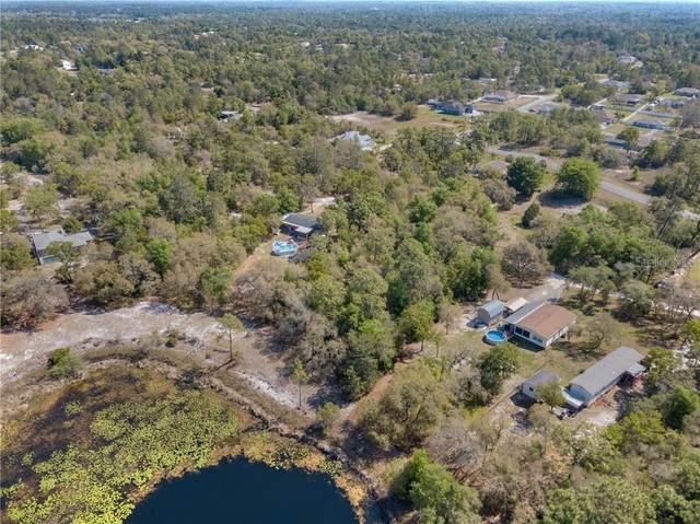 Big Trail, Weeki Wachee, FL 34613 (MLS #W7832472) :: Keller Williams Realty Peace River Partners