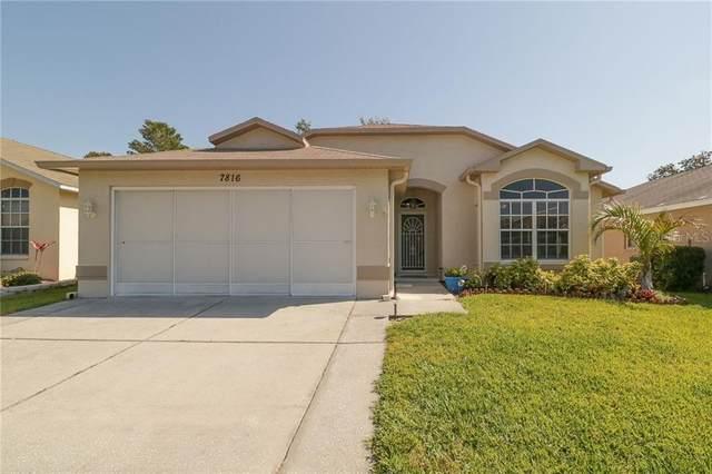 7816 Floradora Drive, New Port Richey, FL 34654 (MLS #W7832491) :: Griffin Group