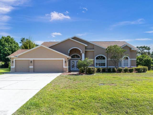 10709 Alico Pass, New Port Richey, FL 34655 (MLS #W7832507) :: Carmena and Associates Realty Group
