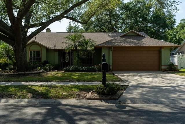 10431 Tara Drive, Riverview, FL 33578 (MLS #W7832537) :: The Duncan Duo Team