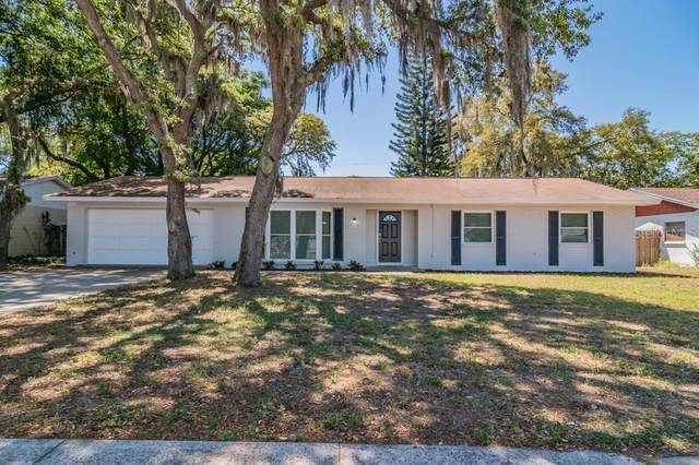 309 E Windhorst Road, Brandon, FL 33510 (MLS #W7832578) :: Team Borham at Keller Williams Realty