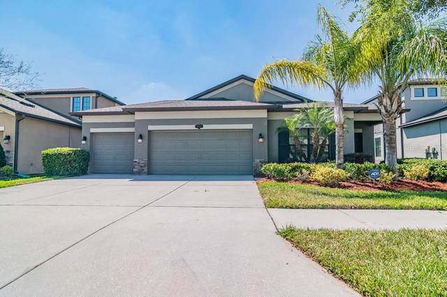 11511 Heron Watch Place, Riverview, FL 33569 (MLS #W7832579) :: Alpha Equity Team