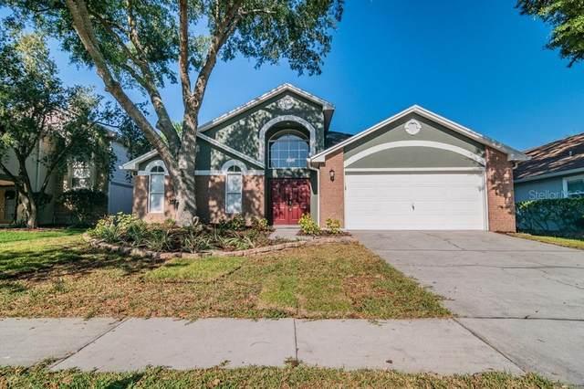 9058 Quail Creek Drive, Tampa, FL 33647 (MLS #W7832582) :: Alpha Equity Team