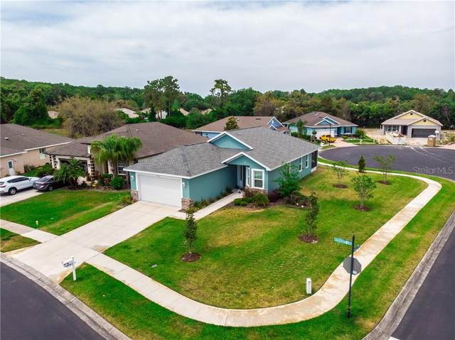 11016 Kiskadee Circle, New Port Richey, FL 34654 (MLS #W7832584) :: Team Borham at Keller Williams Realty