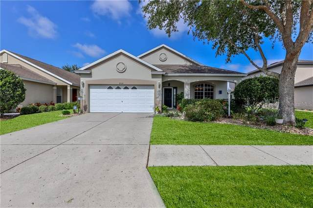 8503 Indian Laurel Lane, Brooksville, FL 34613 (MLS #W7832602) :: The Hesse Team