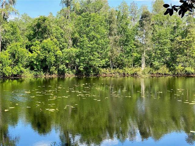 3962 Cove Lake Place, Land O Lakes, FL 34639 (MLS #W7832604) :: Premier Home Experts