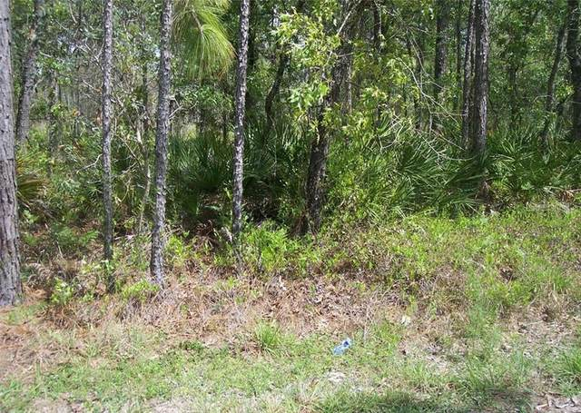 00 NECKLACE WARBLER AVENUE, Weeki Wachee, FL 34614 (MLS #W7832627) :: The Brenda Wade Team