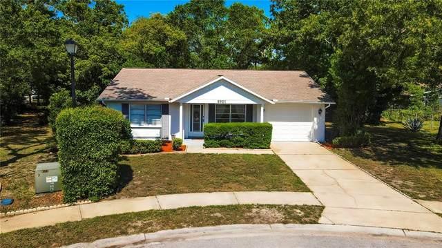 8901 Wayward Circle, Hudson, FL 34667 (MLS #W7832654) :: Bridge Realty Group