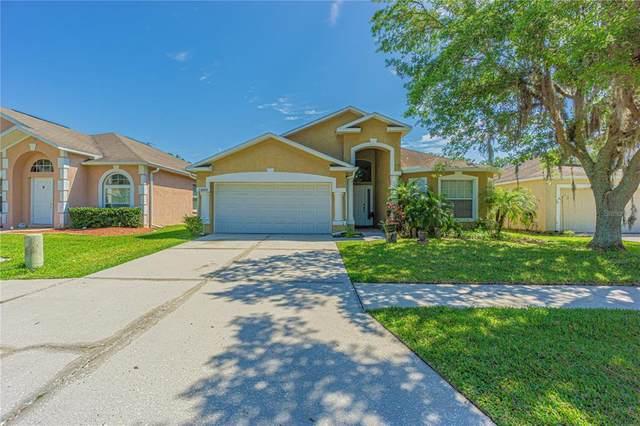 24909 Gun Smoke Drive, Land O Lakes, FL 34639 (MLS #W7832672) :: Vacasa Real Estate