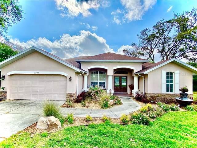 2304 Lema Drive, Spring Hill, FL 34609 (MLS #W7832710) :: Burwell Real Estate