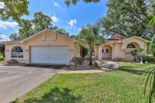 10400 Tilburg Street, Spring Hill, FL 34608 (MLS #W7832712) :: Burwell Real Estate