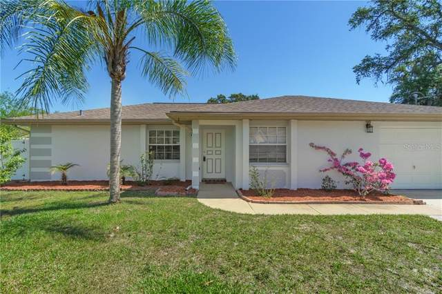 10465 Gatling Street, Spring Hill, FL 34608 (MLS #W7832726) :: Burwell Real Estate