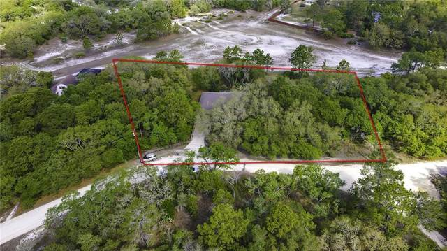 11149 Milgate Court, Weeki Wachee, FL 34614 (MLS #W7832737) :: Burwell Real Estate