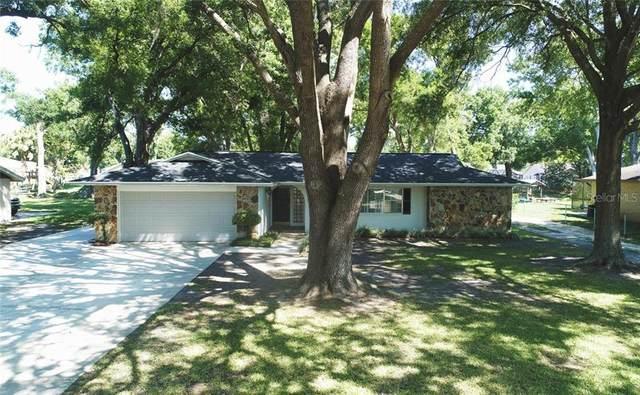 3438 E Lake Drive, Land O Lakes, FL 34639 (MLS #W7832744) :: RE/MAX Premier Properties