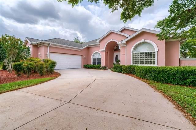 3292 Cedar Crest Loop, Spring Hill, FL 34609 (MLS #W7832770) :: Zarghami Group