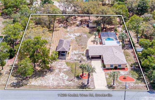 11238 Kodiak Wren Road, Weeki Wachee, FL 34614 (MLS #W7832783) :: Everlane Realty