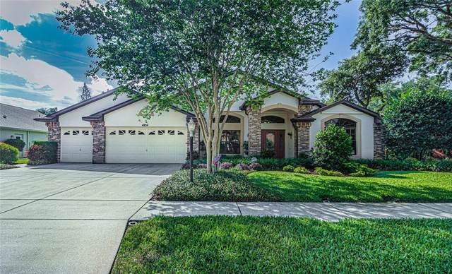 4834 Yellowstone Drive, New Port Richey, FL 34655 (MLS #W7832790) :: Aybar Homes
