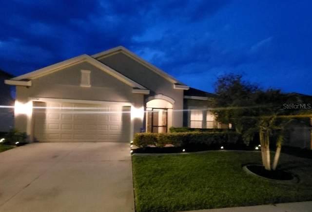 3261 Zander Drive, Grand Island, FL 32735 (MLS #W7832792) :: Gate Arty & the Group - Keller Williams Realty Smart