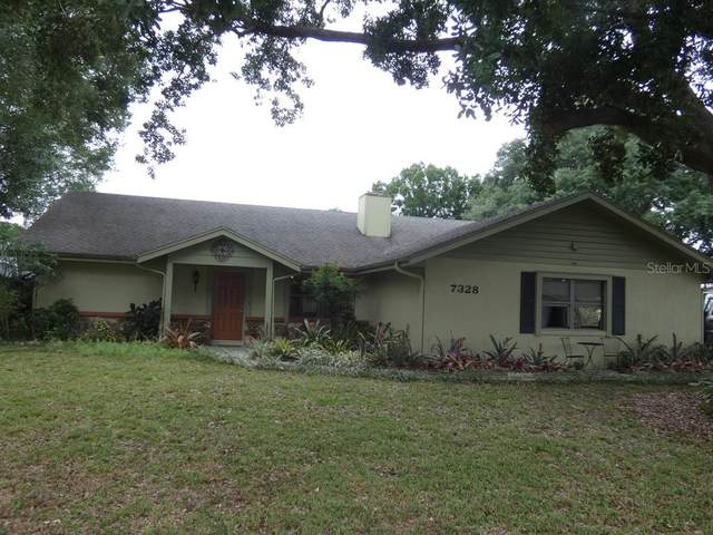 7328 Summit Avenue, Lakeland, FL 33810 (MLS #W7832808) :: Florida Real Estate Sellers at Keller Williams Realty