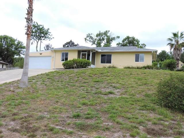 1331 Ivydale Road, Spring Hill, FL 34606 (MLS #W7832884) :: MVP Realty