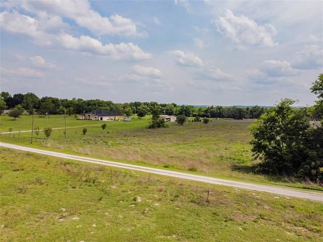 15434 Peach Bloom Road, Brooksville, FL 34614 (MLS #W7833043) :: Premier Home Experts