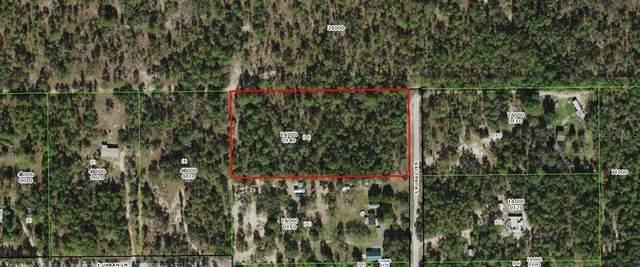 11532 S Rural Terrace, Floral City, FL 34436 (MLS #W7833086) :: Lockhart & Walseth Team, Realtors
