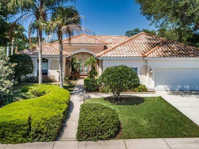 1215 Hagen Drive, Trinity, FL 34655 (MLS #W7833106) :: Premier Home Experts