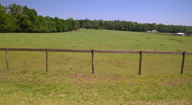 Osage Street, Brooksville, FL 34601 (MLS #W7833152) :: Visionary Properties Inc