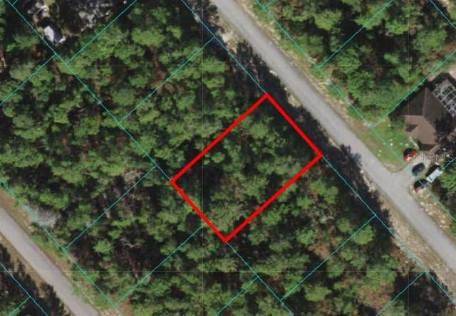 SW 55TH COURT Road, Ocala, FL 34473 (MLS #W7833189) :: The Kardosh Team