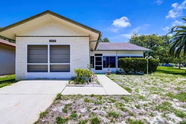 10628 Salamanca Drive, Port Richey, FL 34668 (MLS #W7833212) :: Team Borham at Keller Williams Realty