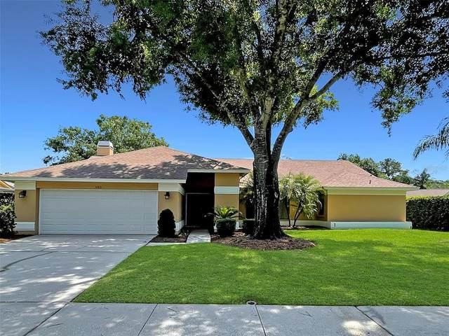 3163 Glenridge Drive, Palm Harbor, FL 34685 (MLS #W7833229) :: Pepine Realty